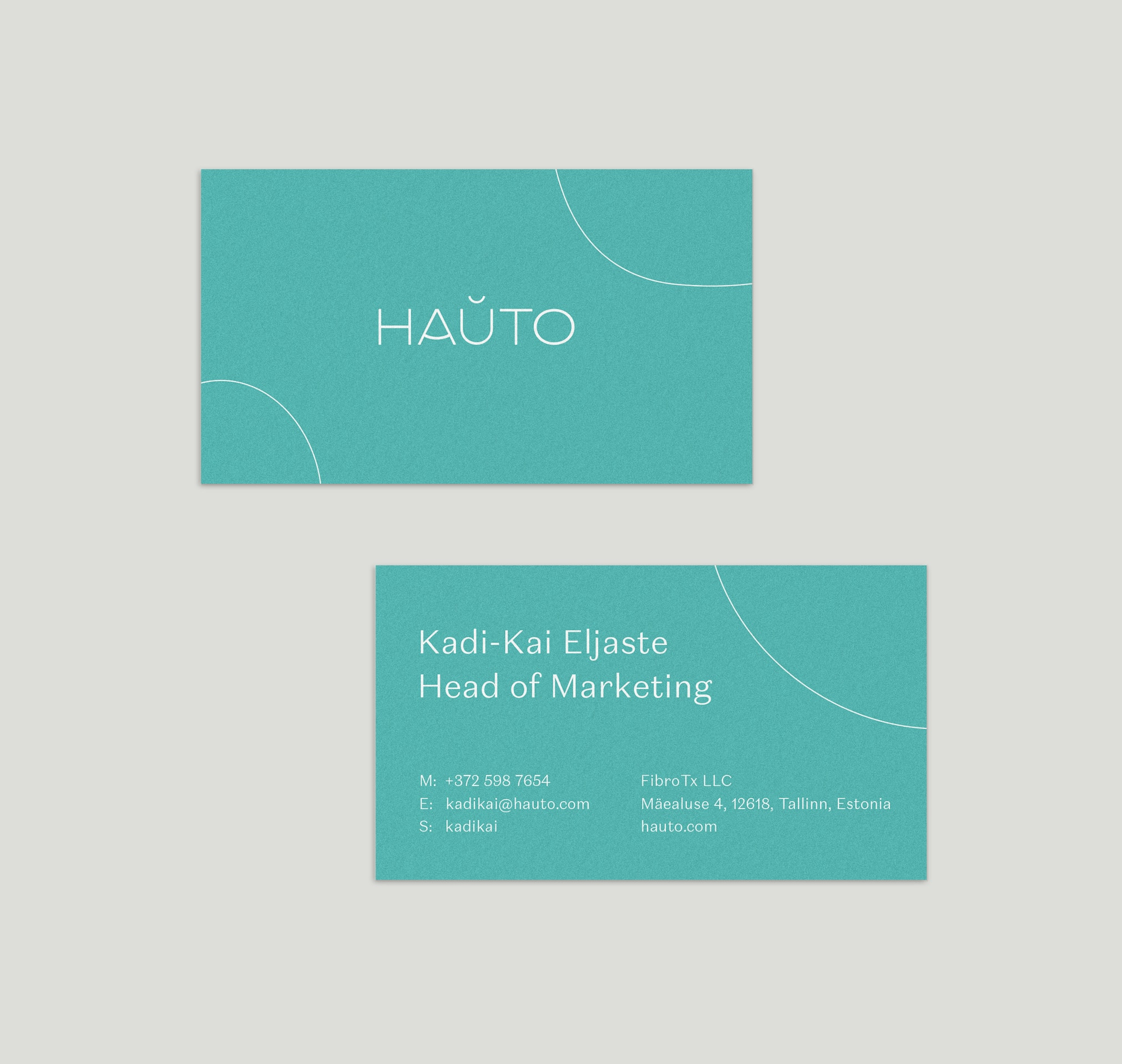 hauto-business-mockup