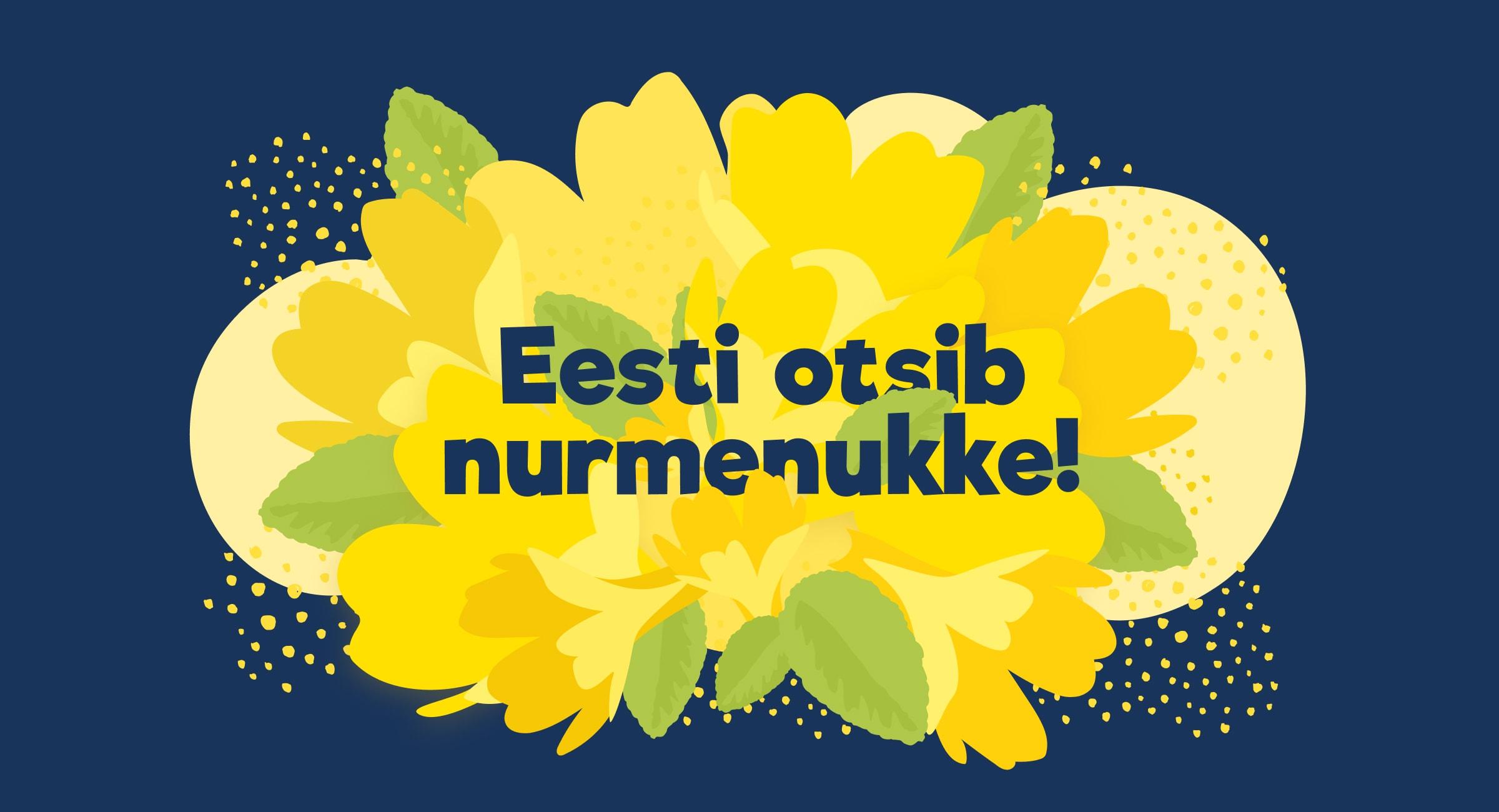 nurmenukk-cover-4